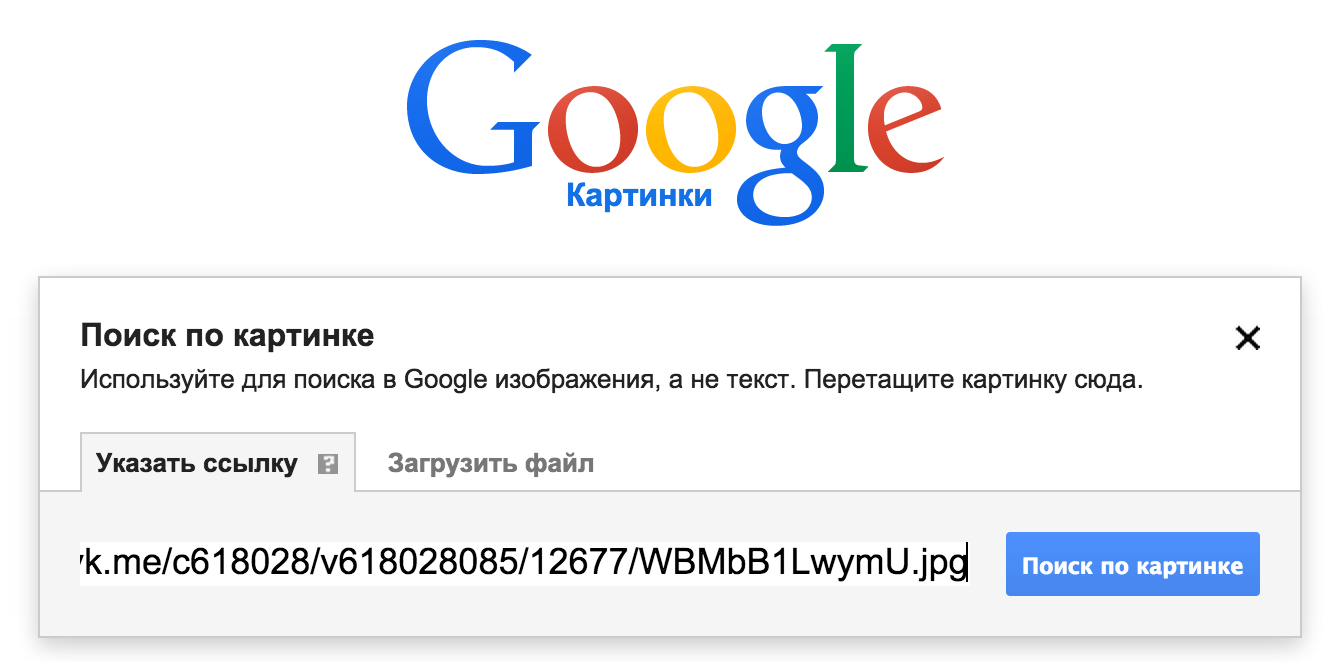 searchimagegoogle