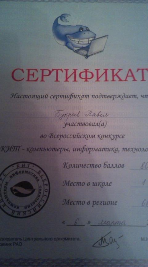 Сертификат участника Всероссийской олимпиады по информатике - Компьютеры , Информатика , Технологии