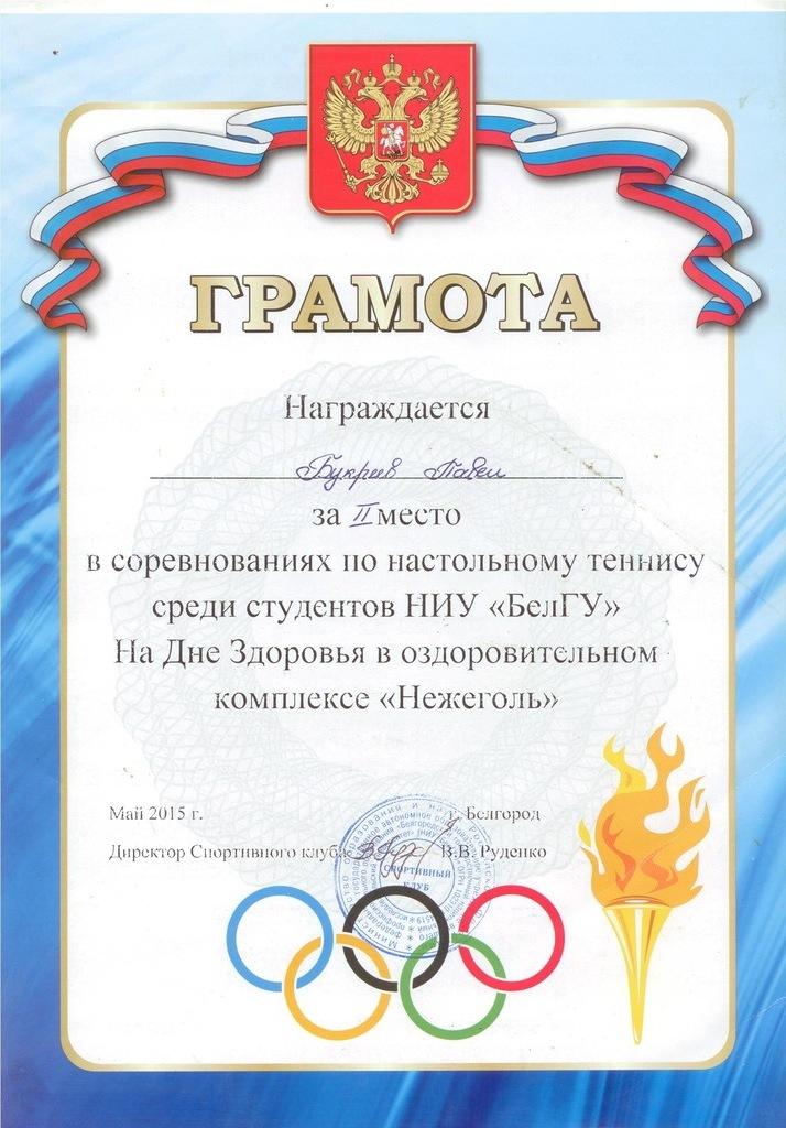 настольный теннис 2 место